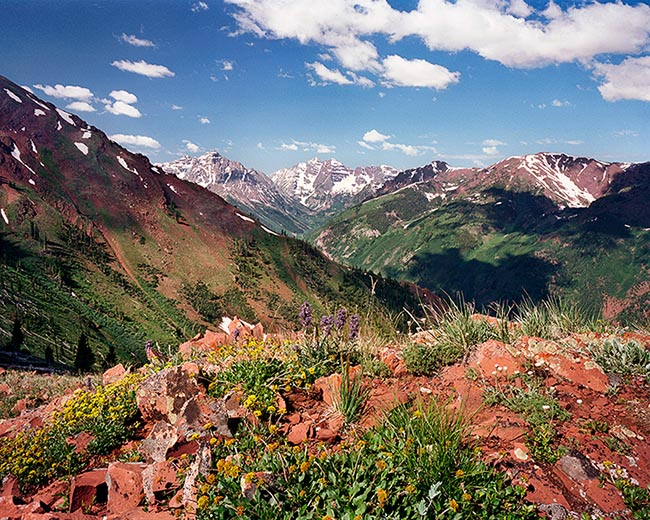 [© Highland Bells by John Austin Hill is described with Color, Warm, Mountain, Horizontal, Summer, Stock, Blue, Green, Neutrals, Peach, Reds, White, Yellows, Maroon Bells, Aspen Highlands, Pyramid, Pyramid Peak, Rocky Mountain, Rockys, White River National Forest, Blue sky, Clouds, Flower, Leaf, Leaves, Lichen, Mt., Alpine, Mountains, Fine Art hit 12971 rate ]