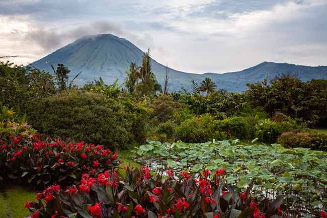 [© Sulawesi Volcano by Judy Hill Lovins is described with Fine Art, Sulawesi, Volcano, Mountain, Flowers, Cool, Red, Warm, Green, Gray, Color, Horizontal, International, remix, Horizontal hit 2474 rate ]